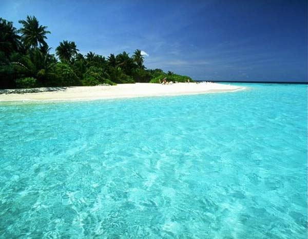Paradise beach, island and water.